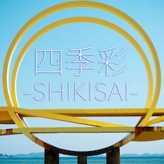 四季彩-SHIKISAI- / HIPPY